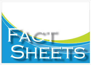 Fact sheets contains overviews or DCH divisions, office and programs.